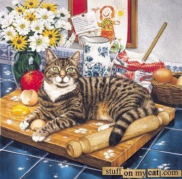 Kitchen Cat by Geoff Tristam