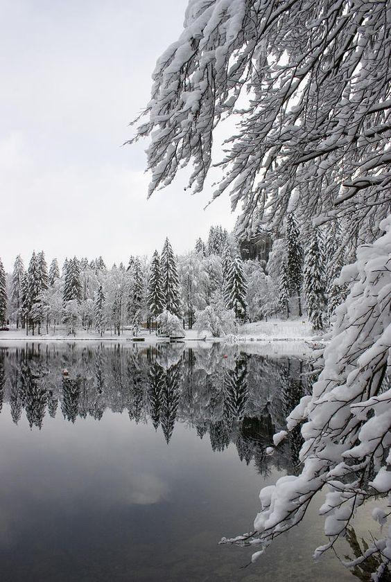 Lake Bohinj in Winter, Slovenia