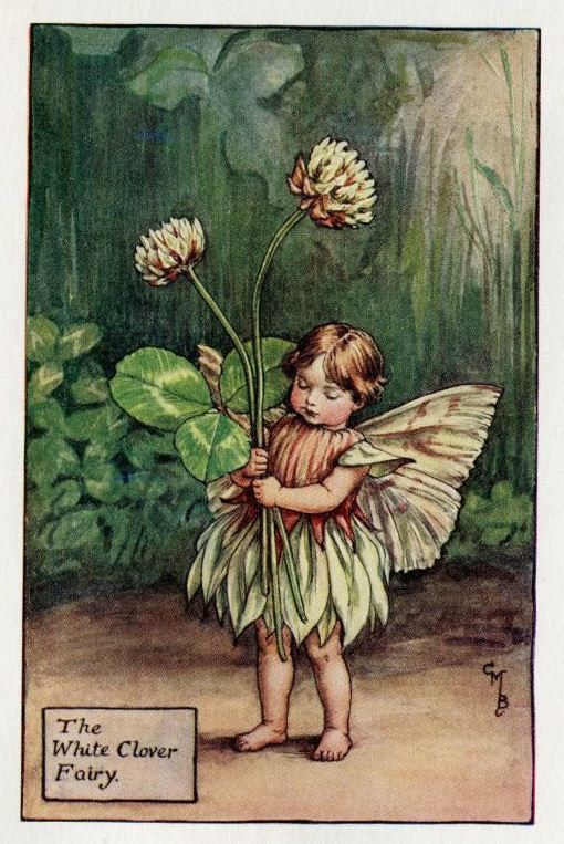 White Clover Flower Fairy Vintage Print, c.1927 Cicely Mary Barker Book Plate Illustration