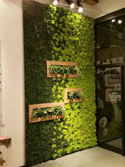 10 Ways To Decorate With Green Moss: Moss Wall, Paint And Art On Pinterest