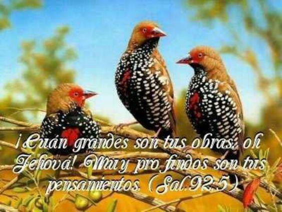 Salmo 92:5