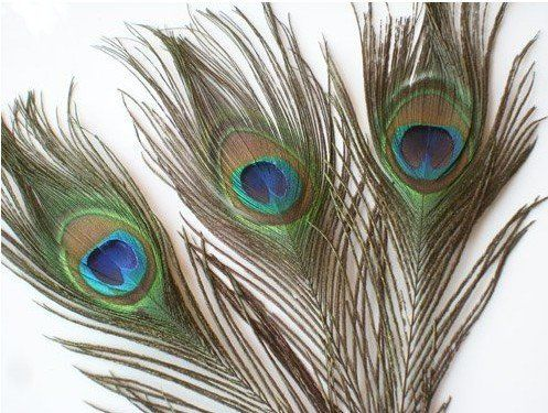 Aliexpress.com : Buy Freel shipping Wholesale 100pcs/lot Natural Peacock Feathers Eyes , about 30cm from Reliable Peacock Feathers Eyes suppliers on Beck Global trade Co . LTD