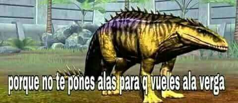 Dino Momos Stupid Memes Dankest Memes Memes