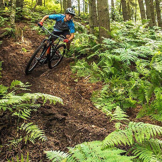 Ready pour les trails anglais ? Rendez-vous vite sur le Facebook Specialized France pour découvrir le nouvel épisode de la série #DestinationTrail : Royaume-uni ! #Camber #2FO #Ambush #PSlope #Dirt #Trail by specialized_fr