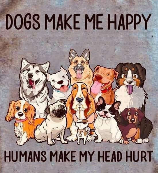Dogs Make Me Happy Dog Quotes Happy Dogs Crazy Dog Lady