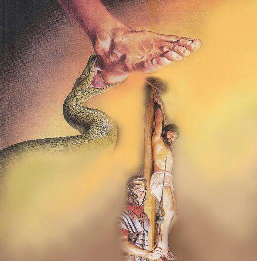 Bildergebnis für snake genesis 3,15 images