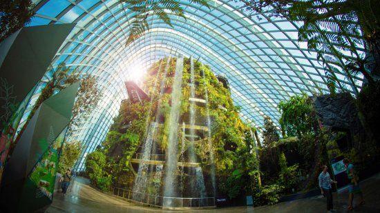Cloud Forest lại cho bạn một chuyến du lịch đến những vùng núi nhiệt đới