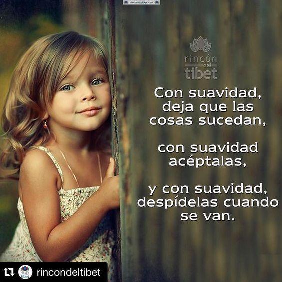 #Repost @rincondeltibet with @repostapp.  Con suavidad deja que las cosa sucedan... #pensamientospositivos #rincondeltibet #like4like