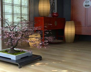 Japanese decor - bonsai tree is neat and the lamps are pretty! Ryan loves Bonsai!