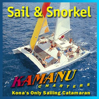 Dolphin Snorkel Hawaii,snorkel with Dolphins,Swim with dolphins, Kona dolphin adventure snorkel,dolphin encounter, snorkeling with Dolphins, Manta Ray snorkel ,whale watching,Turtle Swim, Hawaii Manta Ray night Swim, Hawaii sailboat in Kona Hawaii, Kamanu Sailing with each boat tour.