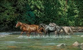 Resultado de imagen para imagenes de caballos caminando