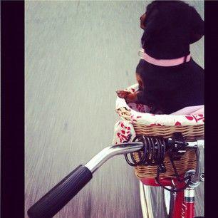 biking with my babygirl. <3