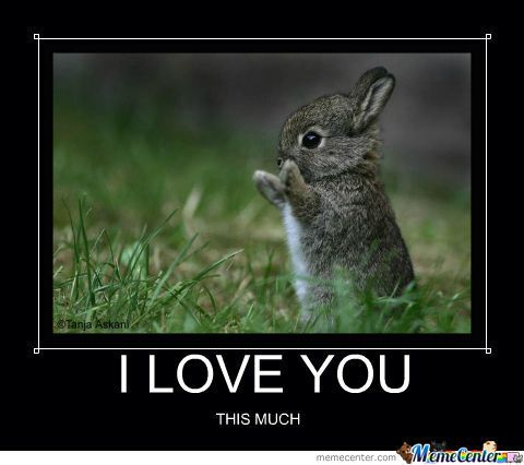 i love you this much animals - photo #7