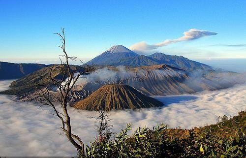 Taman Nasional Bromo Tengger Semeru Jawa Timur Di 2020 Pemandangan Taman Nasional Pariwisata