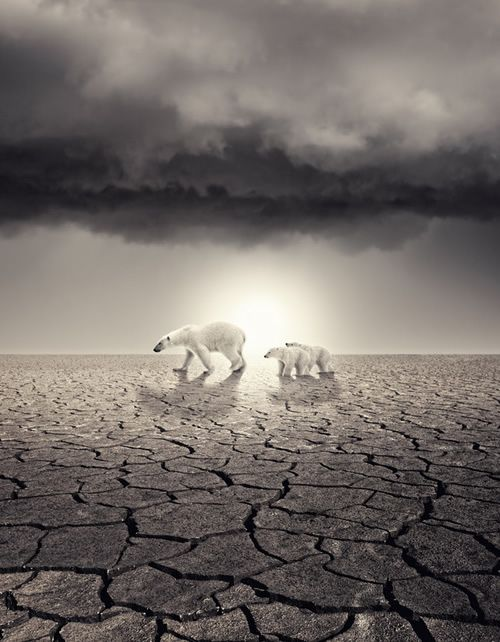 Whats your overall opinion on global warming? I need some inspiration for my geography term paper?