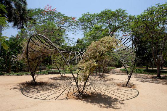 Colección | Botanico Culiacan