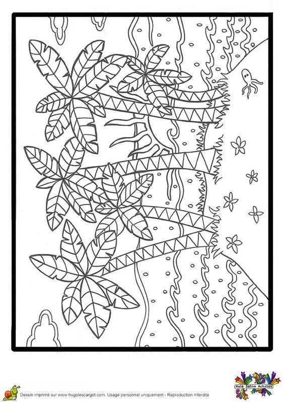 Coloriage des palmiers et des petites plantions sur la - Palmier dessin ...