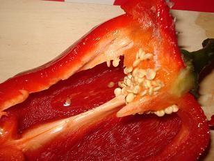 Trucs et astuces pour faire pousser des graines de poivron - Comment planter des poivrons ...