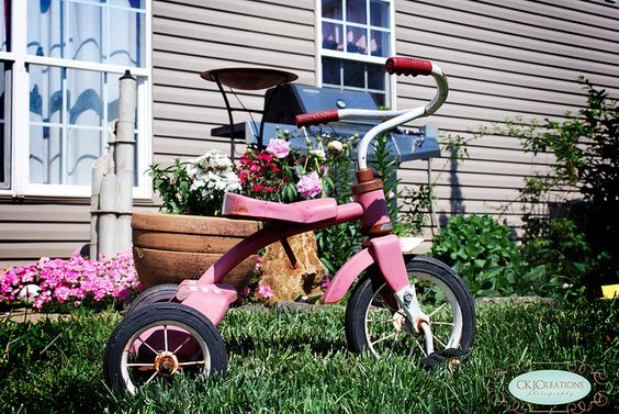 Simplicity with a pink rusty radio flyer trike!