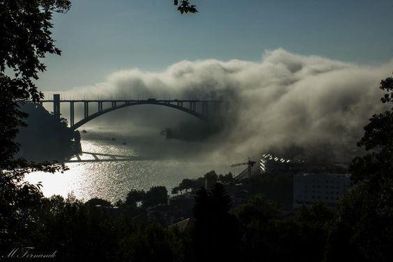Porto Ponte da Arrábida a ser engolida pelas nuvens, vista do jardim do Palácio de Cristal
