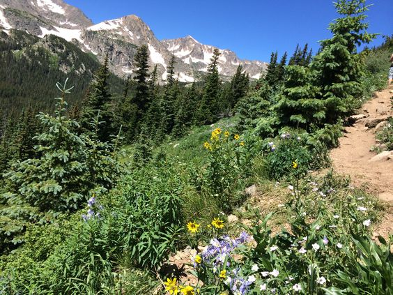 When the mercury rises, summer hiking in Colorado can be more torture than adventure. Here, 5 hikes to beat the heat.