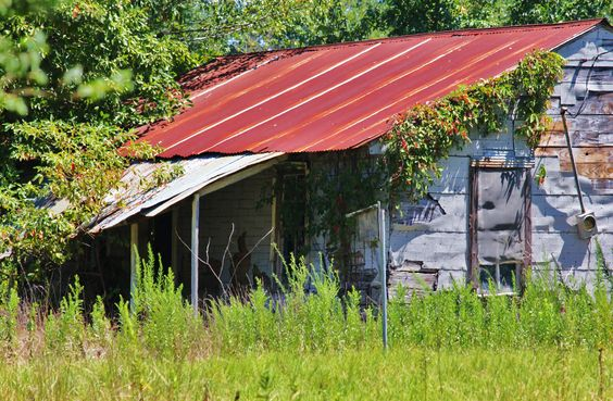 Old farmhand's house on our land in Athens, LA
