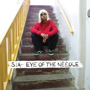 Sia – Eye of the Needle acapella