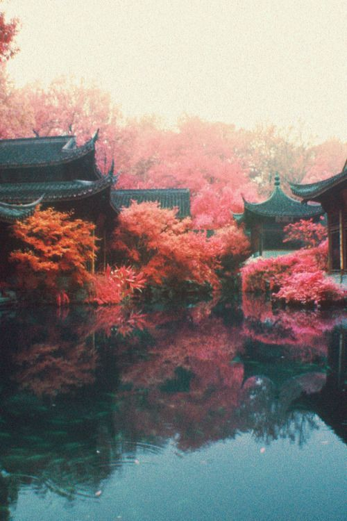 Pin De Steaven Walter En Japanese Inspiration Fotografia Paisaje Viaje A Japón Kyoto Japón