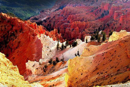 wonderfulwonderfulworld:  ipsloum:Mother Nature's Paintbrush (by yelovet00)  wonderfulwonderfulworld: Kane County, Utah; western United States