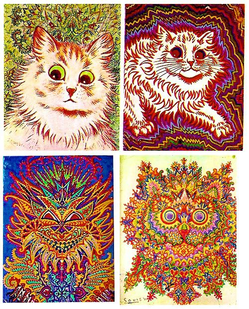dude draws cats while developing schizophrenia (insane) (pics) (kinda freaky) - Bodybuilding.com Forums