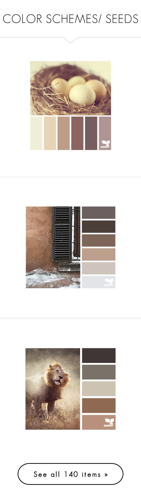 """COLOR SCHEMES/ SEEDS"" by afezoftheheart ❤ liked on Polyvore featuring palettes, design seed, design seeds, colors, backgrounds, color palettes, colours, fillers, colour scheme and color"
