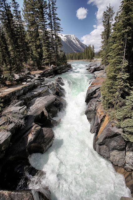 Kootenay National Park, British Columbia, Canada.: