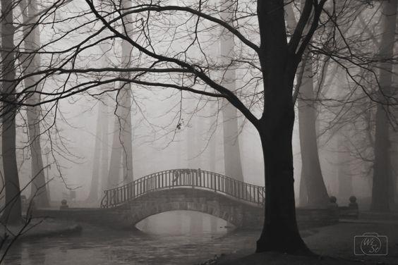 Bridge in fog by WiSt