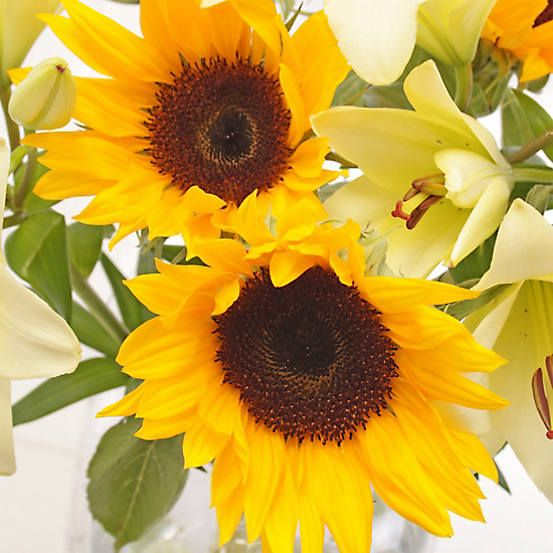 Sunflower Lily Fresh Flower Bouquet With Personalised Gift Card In 2020 Fresh Flower Bouquets Flowers Bouquet Flowers