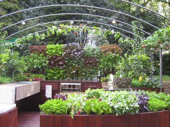 Outdoor kitchen and garden.