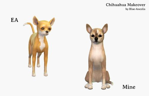 Download Blue Ancolia Sims Pets Sims 4 Pets Sims 4