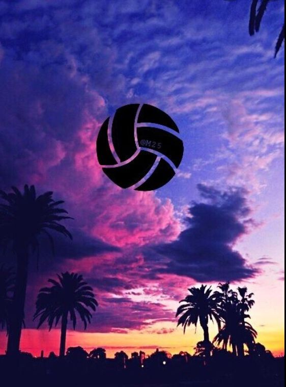Volleyball Fans In 2020 Volleyball Wallpaper Volleyball Backgrounds Sport Volleyball