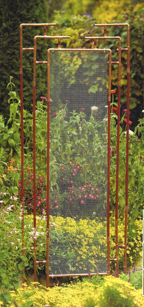 Trellis made out of copper pipe & wire mesh