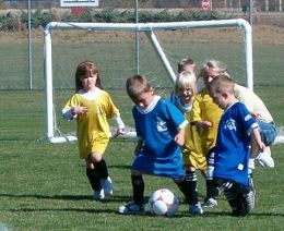 Rule changes needed for soccer