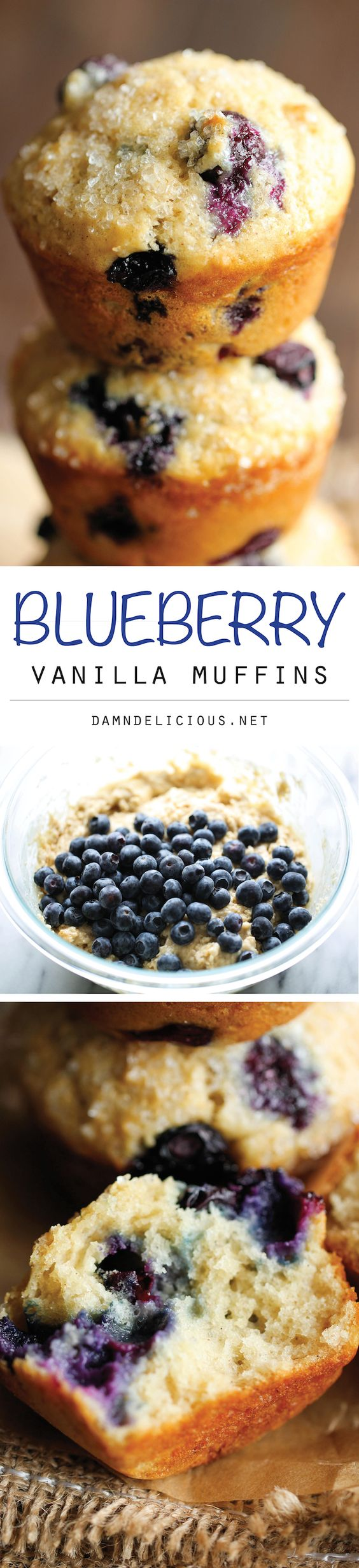 Blueberry Vanilla Muffins - These light and airy muffins are the perfect way to start your mornings, loaded with plump, juicy blueberries and extra vanilla goodness!