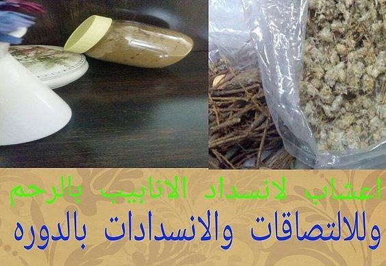 اعشاب لعلاج الالتصاقات والسدد وتنظيم الدوره Breakfast Food