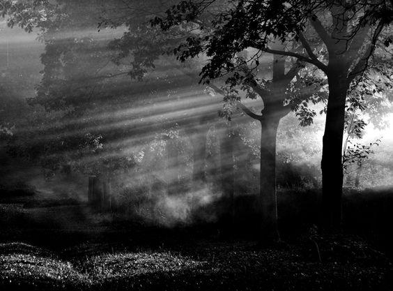 """""""e luce fu """" by Silena Lambertini, via 500px."""