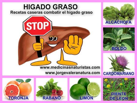 EL HIGADO GRASO Alcachofa: natural para el hígado. Se