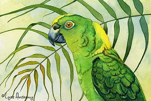 Parrots Painting - Amazon by Lyse Anthony