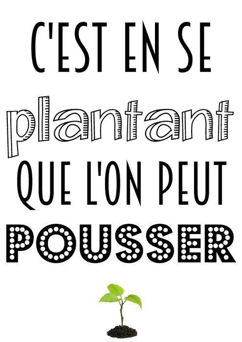 Oui c'est exactement ça !!! C'est en se plantant que l'on est capable de faire pousser nos racines, de se développer mais surtout de Grandir !!!!
