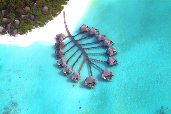 Coco Palm Dhuni Kolhu is the ultimate hideaway in the Maldives.