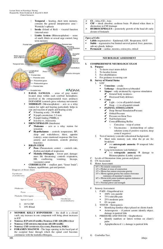 Neuro Nursing | Anatomie | Pinterest | Infirmiers