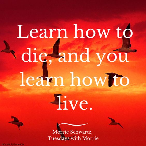 lessons learned from mitch alboms tuesdays with morrie By mitch albom published march 28,  that was the end of tuesdays with morrie,  all these lessons being learned - and morrie isn't even here to teach them.