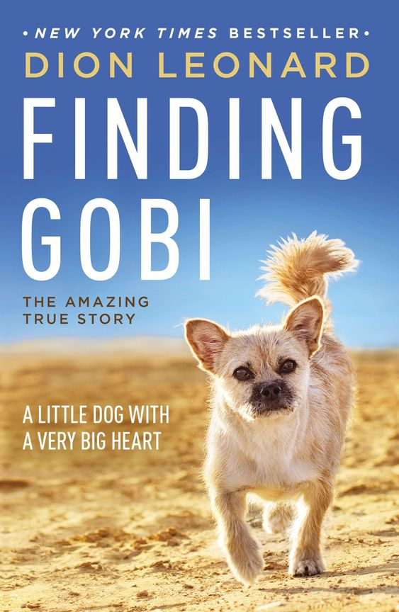 Finding Gobi A Little Dog With A Very Big Heart Paperback June 13 2017 Dog Big Finding Gobi Dog Books Little Dogs Big Heart