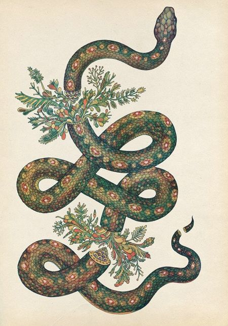 look like th innocent flower but be the serpent under I need to know who says look like the innocent flower, but be th' serpent under't in macbeth also what context is around, why is it said, and to who is it said.